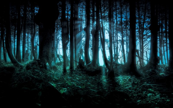 mysterious-scary-forest-pacific-northwest-halloween-holiday-600x375